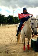 Horse Riding in Florida
