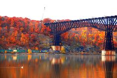 b7a6f2cad7cf933c77de7fbc0ab1fd40--walkway-over-the-hudson-railroad-bridge